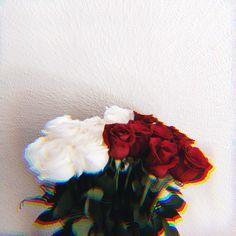 One shot, one kill Tumblr Wallpaper, Cute Wallpaper Backgrounds, Aesthetic Iphone Wallpaper, Flower Wallpaper, Screen Wallpaper, Aesthetic Wallpapers, Cute Wallpapers, Aesthetic Roses, Red Aesthetic