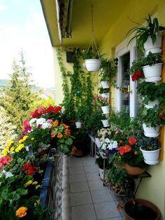 34 Vintage Garden Decor Ideas to Give Your Outdoor Space Vintage Flair - The Trending House Small Balcony Design, Small Balcony Garden, Small Balcony Decor, Balcony Flowers, Balcony Plants, House Plants Decor, Plant Decor, Terrace Garden, Apartment Balcony Garden
