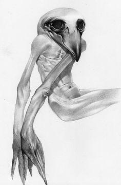 Allen Williams #illustration