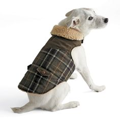 Wool Plaid Coat for Dogs