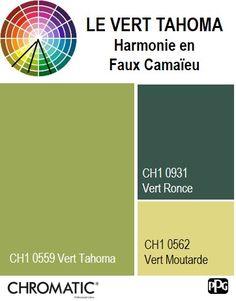 Finalisez votre projet #peinture avec le #Vert Tahoma CH1 0559 en vous rendant dans l'un de nos points de vente partenaires. Trouvez votre distributeur sur www.chromaticstore.com