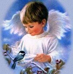 boy angel with bird