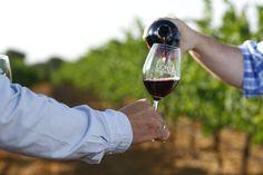 D.O. Vinos de Uclés apuesta por Bodegas Boutique, baja producción, pero de altísima calidad