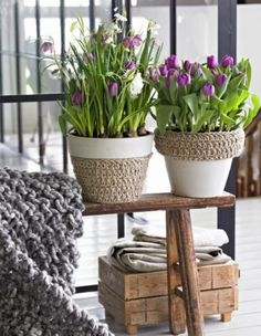 Charming DIY Flower Pots for Your Garden - Thelivingblue