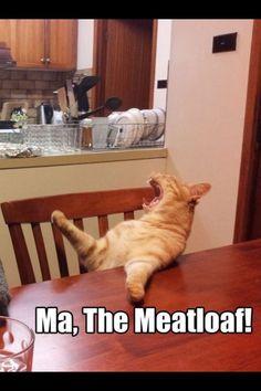 Ma the meat loaf!!! Lmao