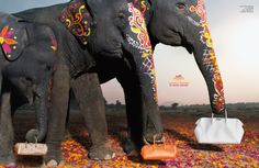 I love animals and I wish I can afford anything by Hermes. But this is about their new ad campaign, which is gorgeous, beautiful, creative, colorful and uses my Indian Elephant, Elephant Love, Elephant Art, Hermes Orange, Fashion Advertising, Hermes Paris, Tier Fotos, Luxury Branding, Baby Animals