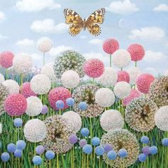 Alan Parry - Painted Lady