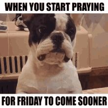 """55 """"Almost Friday"""" Memes - """"When you start praying for Friday to come sooner."""" Thursday Gif, Friday Gif, Its Friday Quotes, Happy Friday, Friday Memes, Tomorrow Is Friday, Weekend Is Coming, Almost Friday, When You Realize"""