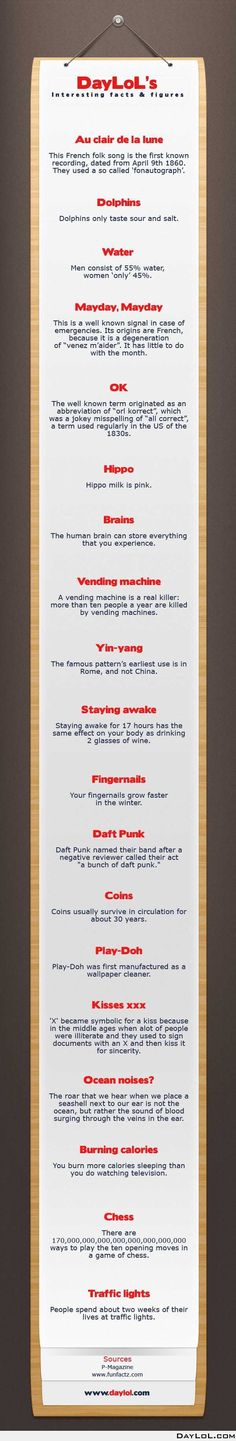 DayLoL's interesting facts and figures