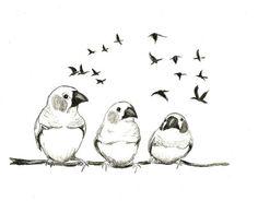 Original Bird Drawing - Birdie Talk