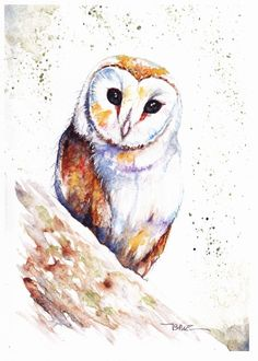 Christmas Gifts - Print by Be Coventry, Barn Owl