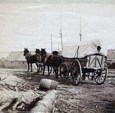 Conestoga Wagon | Covered Wagon- City Point, Virginia – Civil War Supply Depot ...