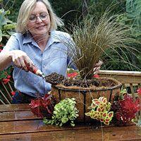 Steps on Side Planting Your Basket