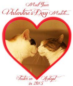 419 valentine ave piermont ny