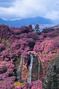 ✯ Waterfall - Kauai, Hawaii