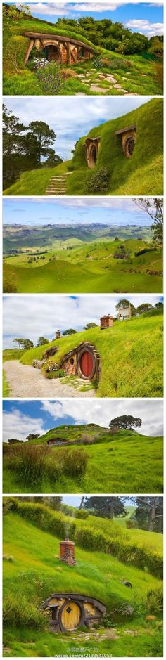 hobbit house new zeland: