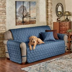 Transport yourself to a beautiful retreat with the Paramount Solid Color Furniture Protectors, while protecting your furnishings from pets, stains, and dirt. Decor, Easy Furniture Plans, Pet Sofa Cover, Creative Furniture, Bed Furniture, Furniture Covers, Cool Furniture, Colorful Furniture, Diy Sofa