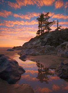 Cox Bay in Tofino BC Canada | tranquility #tidepools