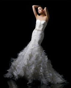 1000 images about wedding dresses on pinterest feather for Wedding dress with feathers on bottom