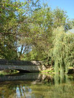Gîte du Pont de la Roche en Bourgogne  #river, #rivière, #nature, #pêche, #fishing, #Bourgogne, #vacation rental, #bois, #maison bois www.pont-roche.com