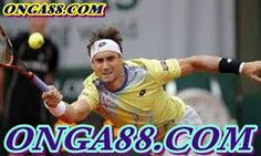 Ask any casual tennis fan to name some players on the ATP Tour and the answers are likely to be the same. Novak Djokovic, Roger Federer, Rafael Nadal and Andy Murray are sure to mentioned most frequently. Andy Murray, 2015 Movies, Rafael Nadal, Roger Federer, Tennis Players, Keep Up, Movie Tv, Baseball Cards, News