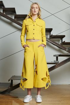 Rosie Assoulin - Resort 2016 - Look 9 of 34?url=http://www.style.com/slideshows/fashion-shows/resort-2016/rosie-assoulin/collection/9