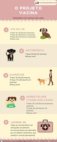 Baby Dogs, Pet Dogs, Dog Cat, Animals And Pets, Cute Animals, Dachshund, Dog Soldiers, Pet Vet, Veterinary Medicine