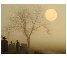 Foggy Graveyard Photographmoonnight fog Gothic decor by gothicrow, $16.00
