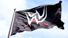 Spoiler on a WWE Celebrity Match Possibly Happening Soon | Daily Wrestling News