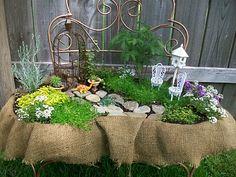 Fairy Garden in antique gardening bench