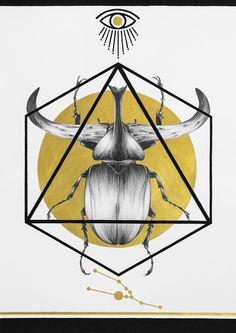Transformation - Solo Show by Peony Yip (Part II) on Behance Zodiac Signs Astrology, Peonies, Deer, Behance, Ceiling Lights, Pendant, Illustration, Insects, Muse