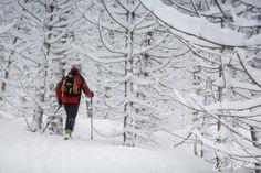 A skitouring day on home hill Nevegàl with Stefano. We enjoy our #snow  Davide Dal Mas  www.davidedalmas.com