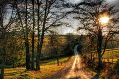 . country-roads-landscapes