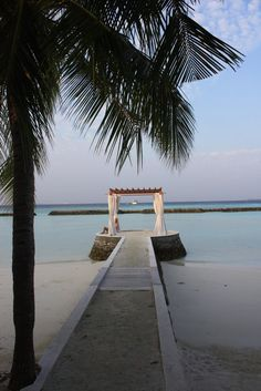 Back to the sea, Maale, Maldives Copyright: Christian pp
