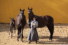 Mário Vinhas, Herdade do Zambujal, Portugal  IMG_1395 (RPG PHOTOGRAPHY) Tags: mario vinhas
