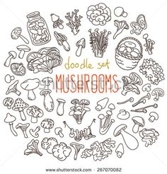 Different Types Of Edible And Non Edible Mushrooms. Set Of Doodles, Hand Drawn Rough Simple Sketches. Vector Icons Isolated On White Background. - 267070082 : Shutterstock