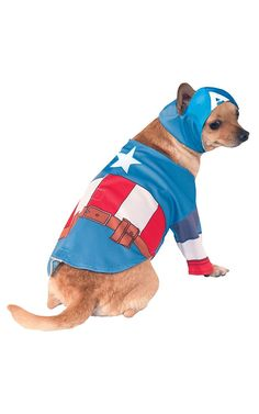 Rubies Costume Company Marvel Classic/Marvel Universe Captain America cat Costume -- Special cat product just for you. See it now! : Cat sweater