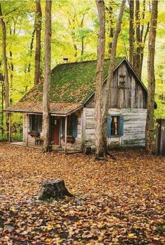 Cabins And Cottages: Northern Bushcraft : Photo I'd put a metal roof on it with all the leaves and sticks etc falling and laying on the roof all the time. Shingles wouldn't last long. Old Cabins, Log Cabin Homes, Cabins And Cottages, Cabins In The Woods, Rustic Cabins, Little Cabin, Little Houses, Abandoned Houses, Old Houses