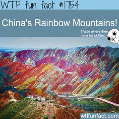 WTF Facts : funny, interesting & weird facts: Photo