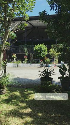 Tumblr Photography, Yogyakarta, Bali Travel, Wallpaper Backgrounds, Grass, Places To Go, Beautiful Places, Scenery, Mood