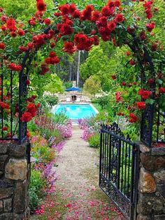 Ideas For Backyard Garden Pergola Climbing Roses Pergola Garden, Garden Landscaping, Garden Pool, Landscaping Ideas, Garden Fences, Garden Kids, Gravel Garden, Pergola Roof, Metal Pergola