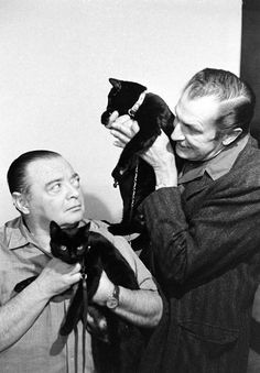 Black cat auditions in Hollywood. Peter Lorre and Vincent Price. Crazy Cat Lady, Crazy Cats, In Hollywood, Classic Hollywood, Hollywood California, I Love Cats, Cool Cats, Celebrities With Cats, Celebs