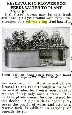 The 1920's Sub-irrigated Planter (SIP) Before the EarthBox, Inside Urban Green.    Because everything new... is old.