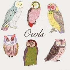 CLIP ART - Owls - for commercial and personal use