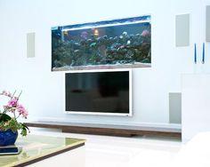 http://www.star-interior-design/x-complementi-arredo/acquari