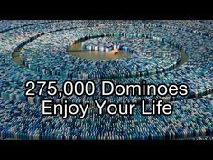 Watching 275,000 Dominoes Tumble Is Weirdly Hypnotic