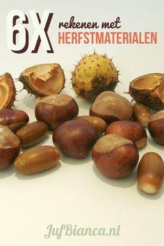 6x rekenen met herfstmaterialen - Juf Bianca