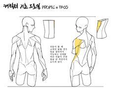 Human Anatomy Drawing, Drawing Body Poses, Body Reference Drawing, Anatomy Reference, Art Reference Poses, Drawing Tips, Anatomy Sketches, Body Sketches, Body Anatomy