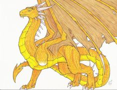 Glaedr the Gold Dragon. This is a good reference for drawing dragons. Murtagh Eragon, Eragon Saphira, Gold Dragon, Dragon Eye, Eragon Fan Art, Inheritance Cycle, Dragon Movies, The Villain, Mythical Creatures