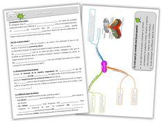 PDT n°1 - Sciences - Les volcans - Journal de bord d'une instit' débutante Bullet Journal, Cycle 3, Blog, Physics, Volcanoes, Mental Map, Countertop, English People